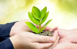 Salzinger-Sheaff-Brock-investment-growth